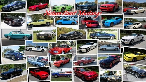 Nature Coast Mustangs Member Cars Collage